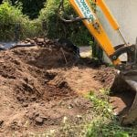 Excavating Japanese Knotweed in Devon
