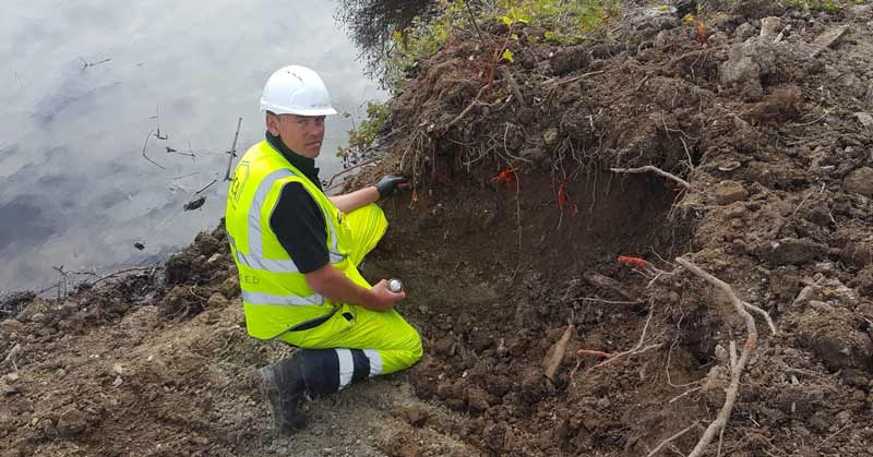 Japanese Knotweed Treatment plans in Cornwall Devon Somerset and Bristol