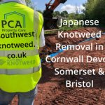 Japanese Knotweed Removal Cornwall Devon Somerset Bristol
